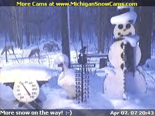 Snowman Cam in April 2007 with deer in background.