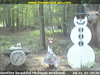 White tail deer standing near the snowman.